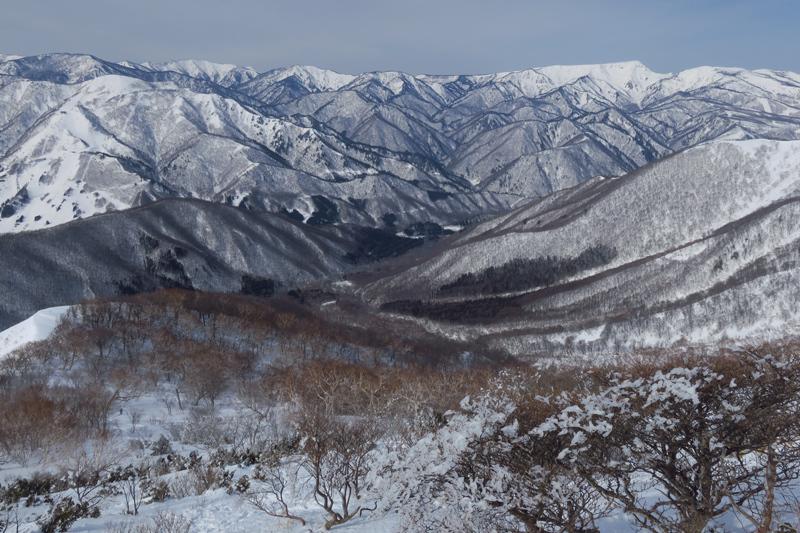 ヤカイ沢からの平標山と仙ノ倉山 (谷川連峰)_f0126932_20082879.jpg