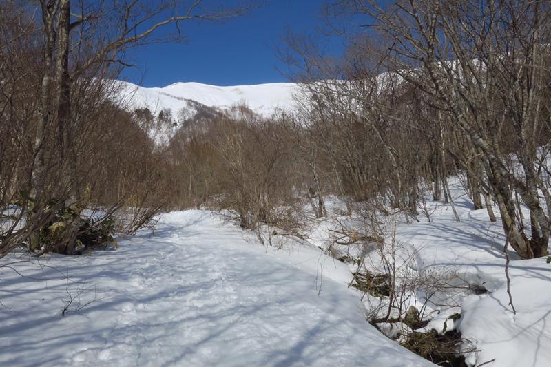 ヤカイ沢からの平標山と仙ノ倉山 (谷川連峰)_f0126932_20122110.jpg