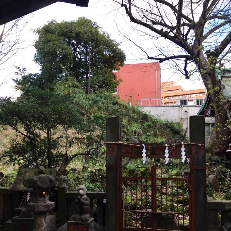 今日の富士山は「下谷坂本の富士塚」 #アーバンアルピニスト_c0060143_23464831.jpg