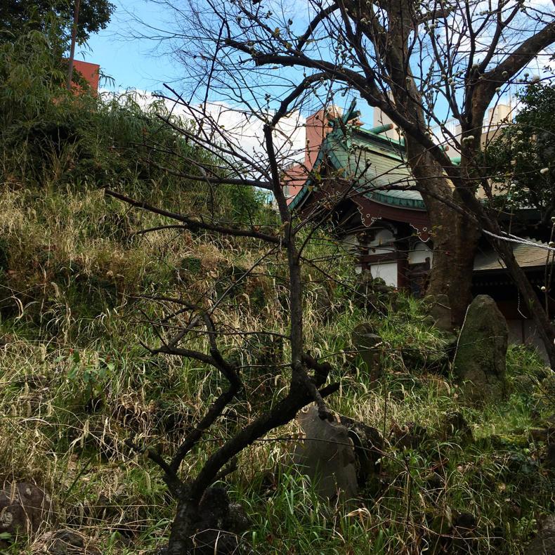 今日の富士山は「下谷坂本の富士塚」 #アーバンアルピニスト_c0060143_23465059.jpg
