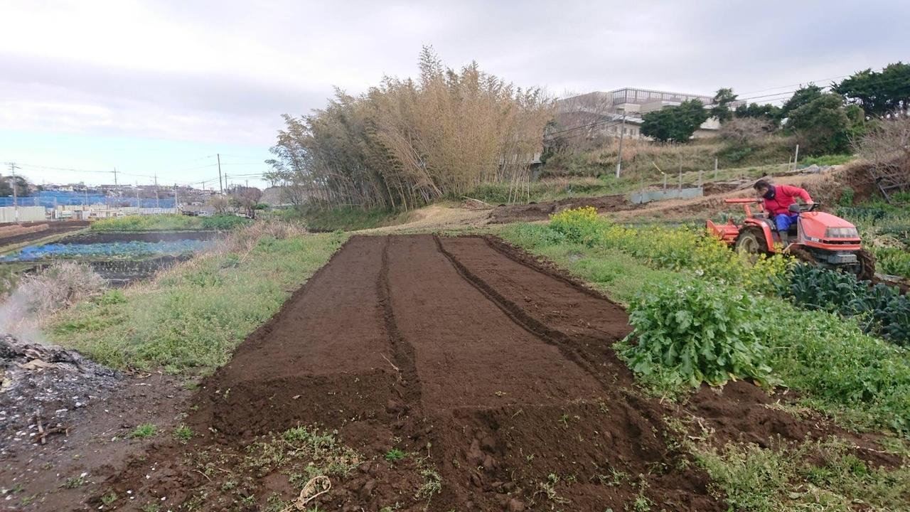 さあ じゃが芋の畝作りです 続いて 蚕豆 エンドウ豆の防鳥ネット張り始めます_c0222448_13000828.jpg