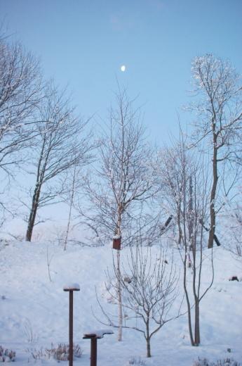ホワイトデーの雪_c0110869_06353407.jpg