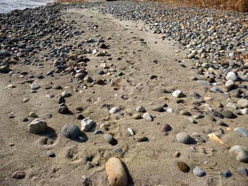 石という星の世界_d0366590_19570379.jpg