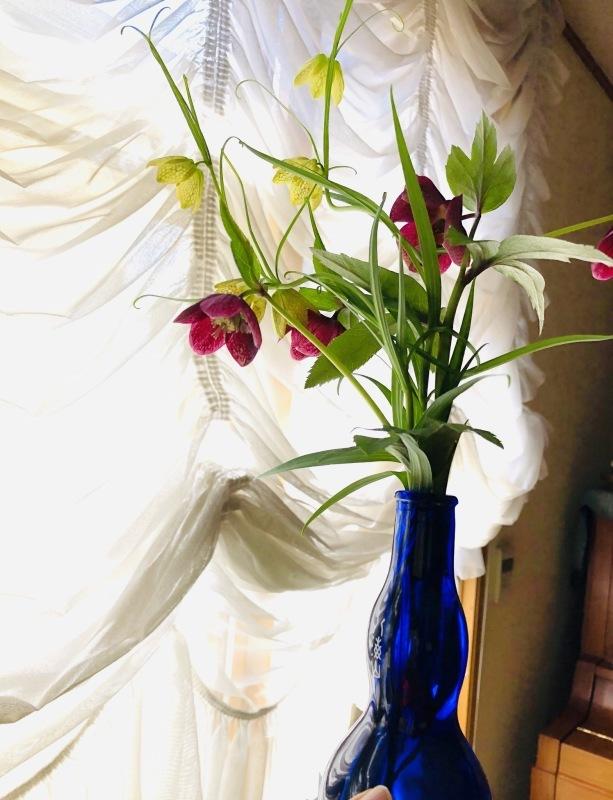 春の気配_a0129492_19190092.jpeg