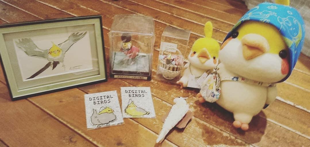 関西つうしん【鳥展 vol.10】KiwaNuma通信販売_d0322493_01490997.jpg