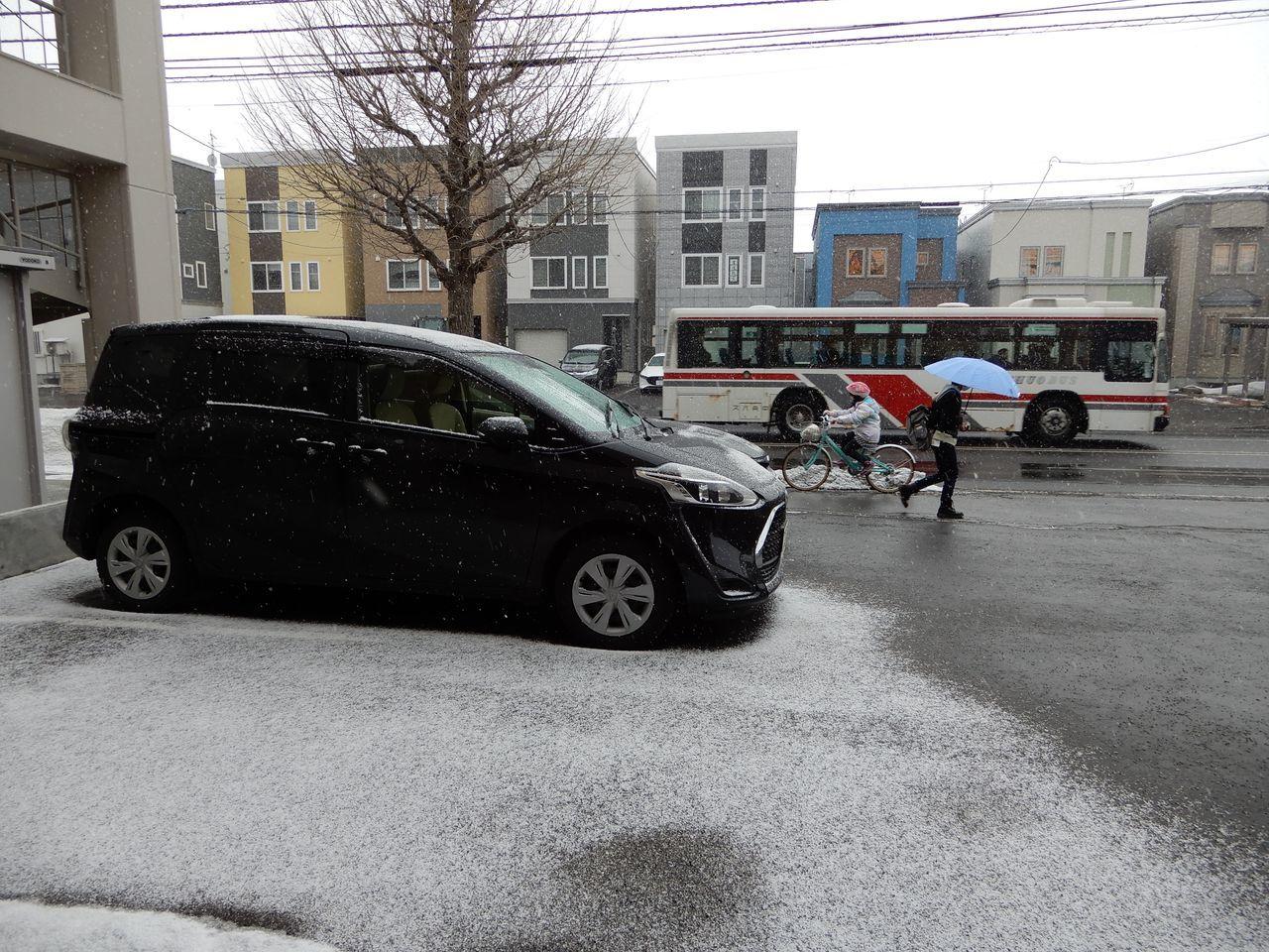 寒い中雪どけは進む_c0025115_21564280.jpg