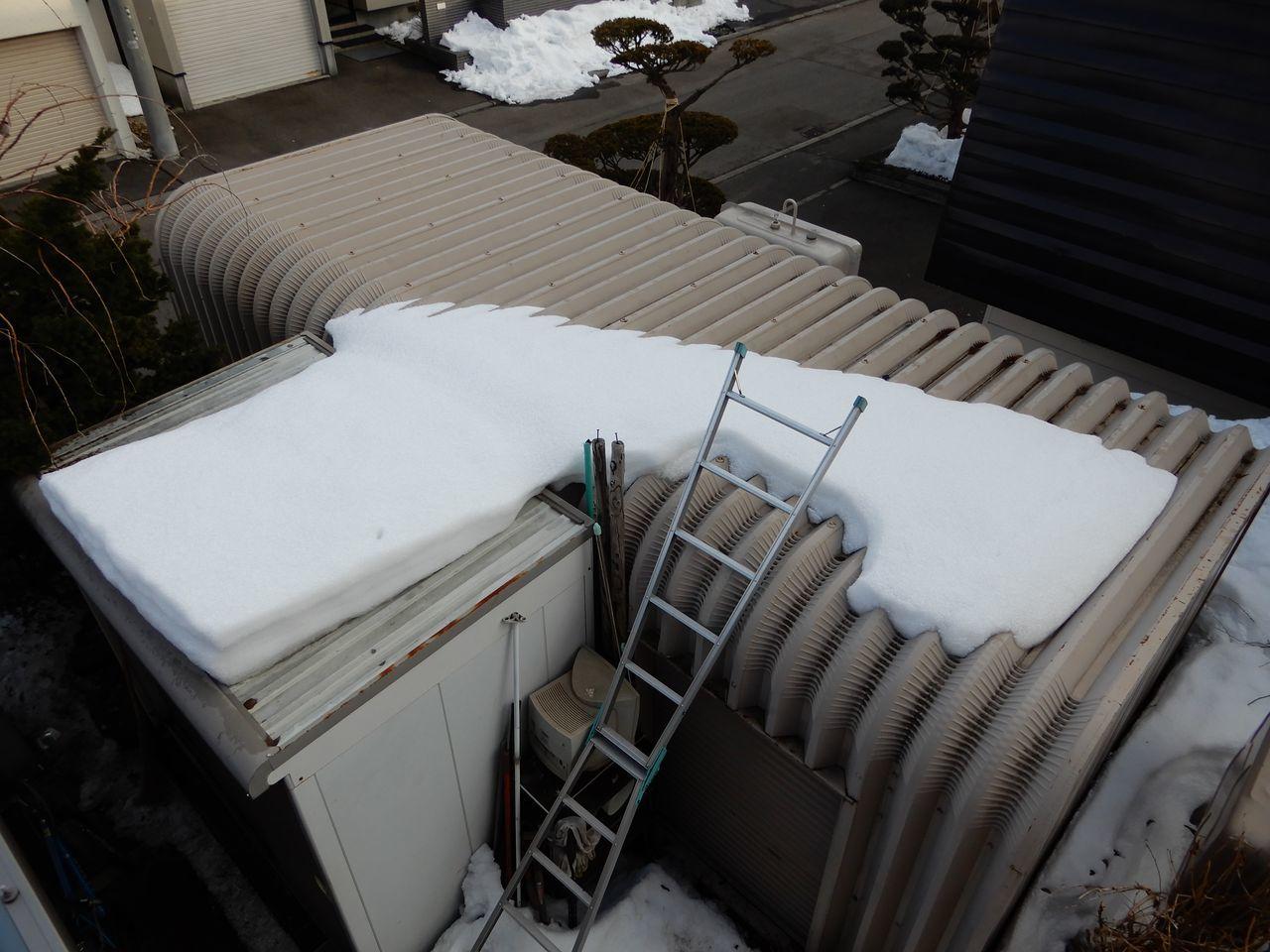 寒い中雪どけは進む_c0025115_22045029.jpg