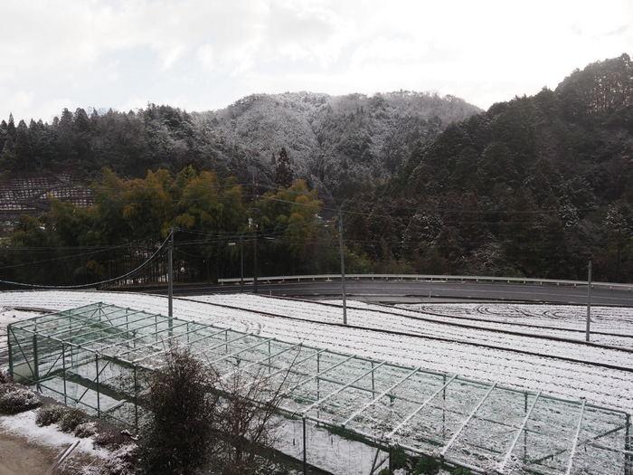 今朝の雪景色_c0116915_23540448.jpg