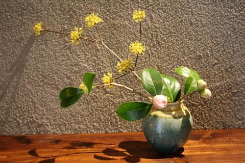 春咲 harusaki_a0260022_14483791.jpg