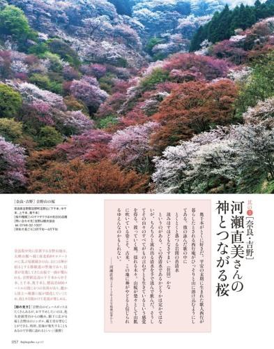 婦人画報 2020年4月号 吉野山が表紙です!_e0154524_14022474.jpg
