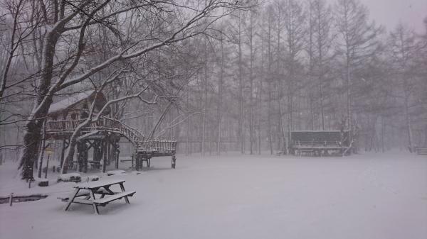 またまた雪が降りました!スタッドレスタイヤ必須(2020年3月16日)_b0174425_13433825.jpg