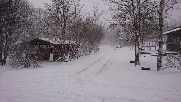 またまた雪が降りました!スタッドレスタイヤ必須(2020年3月16日)_b0174425_13434961.jpg