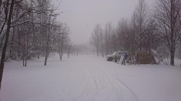 またまた雪が降りました!スタッドレスタイヤ必須(2020年3月16日)_b0174425_13435524.jpg