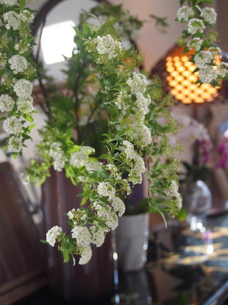 春の花とティーグラス_e0396727_10135494.jpg