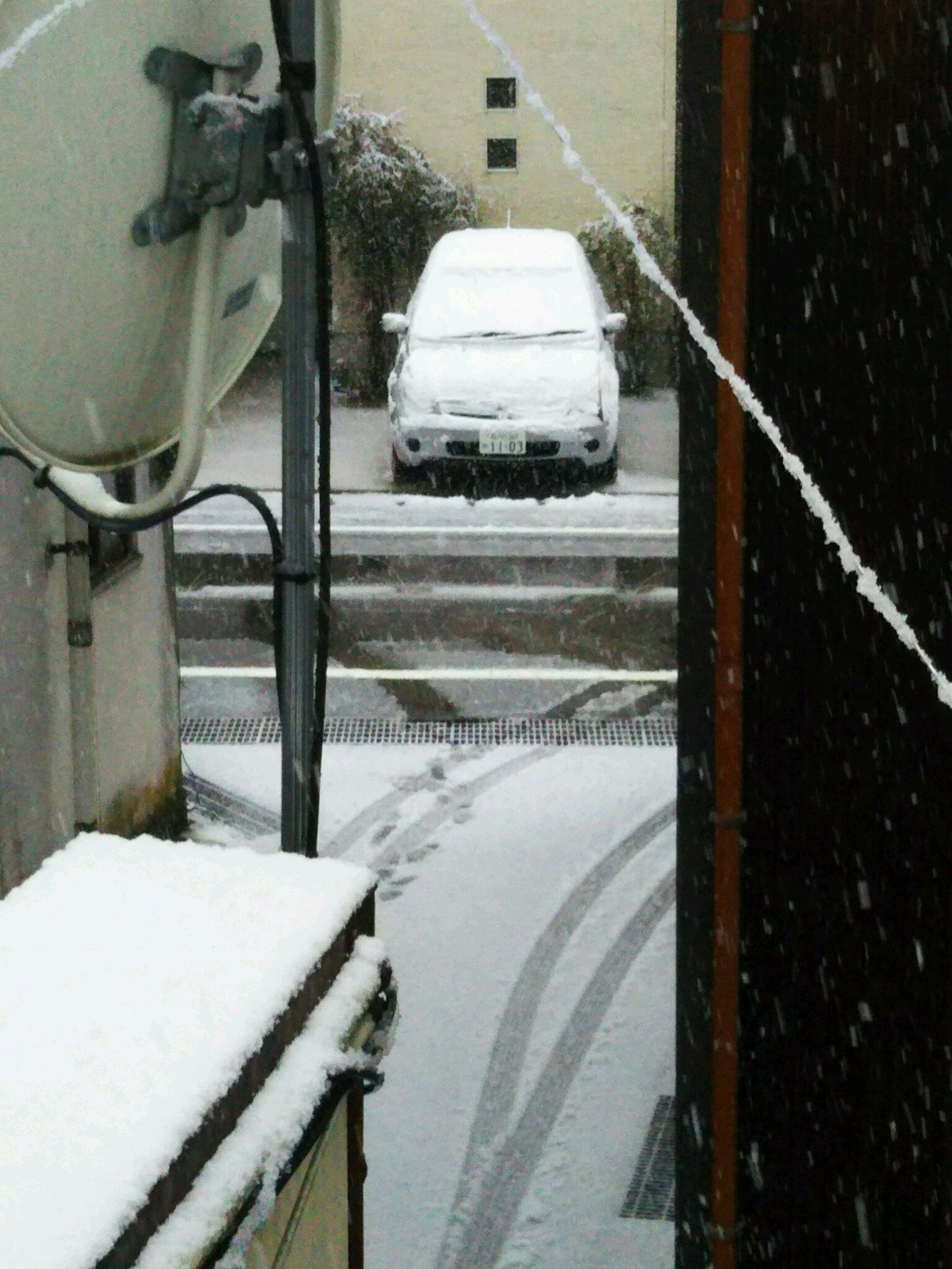 今さらの雪_f0040734_09124634.jpg