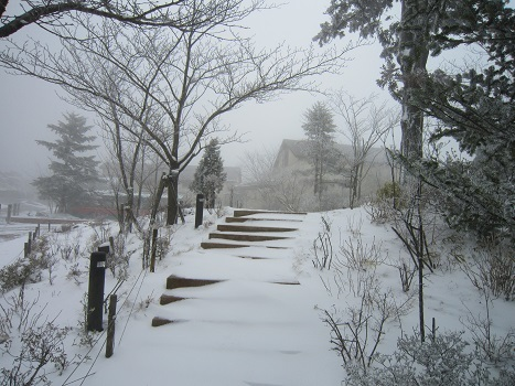 六甲山に雪が降ったよ~♪(1)_b0177436_21204811.jpg