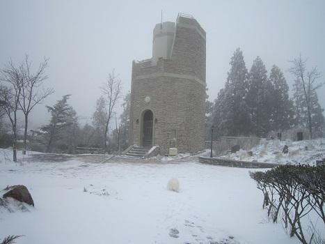 六甲山に雪が降ったよ~♪(1)_b0177436_21260813.jpg