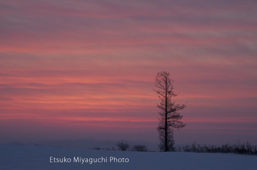 美しい朝焼け_f0152939_17073764.jpg