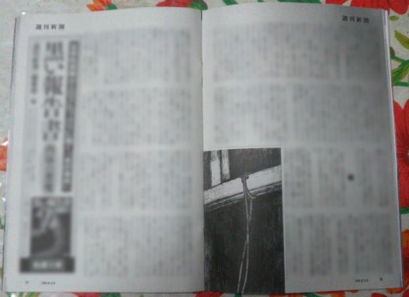 週刊新潮「雷神」挿絵 第1回〜10回_b0136144_16424072.jpg