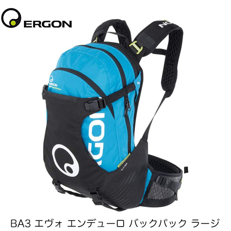 3/16 特価案内:ERGONバック編_b0189682_17162740.jpg