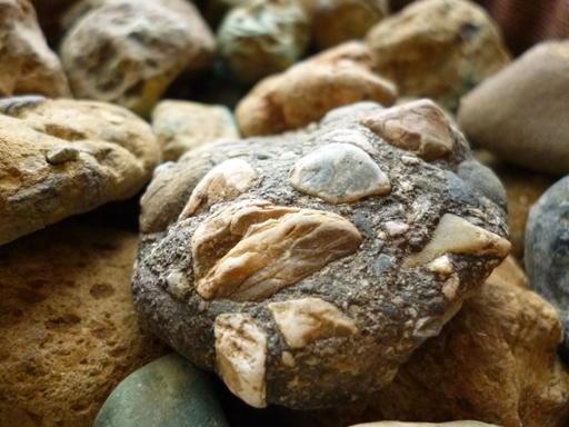 石という星の世界_d0366590_15222234.jpg