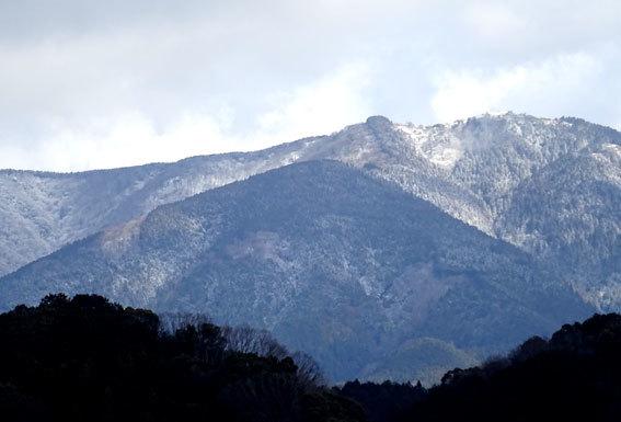 雪から桜へバトンタッチ_b0145296_10205727.jpg