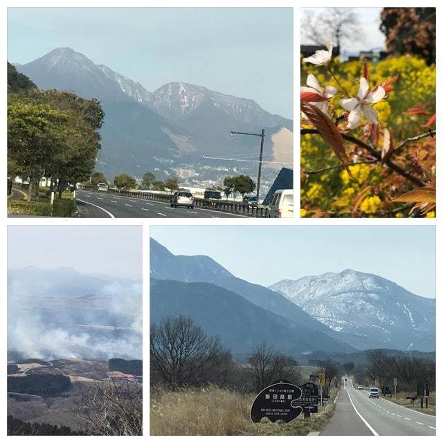 なごり雪…素敵な春がきますように_d0070316_19455741.jpeg
