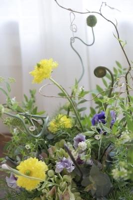 春の音楽♪_d0086634_19094912.jpg