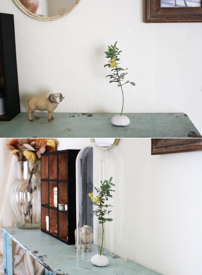 家にある材料で簡単☆「ミモザアレンジ」_d0351435_08581812.jpg