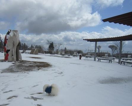 六甲山に雪が降ったよ~♪(2)_b0177436_20582980.jpg
