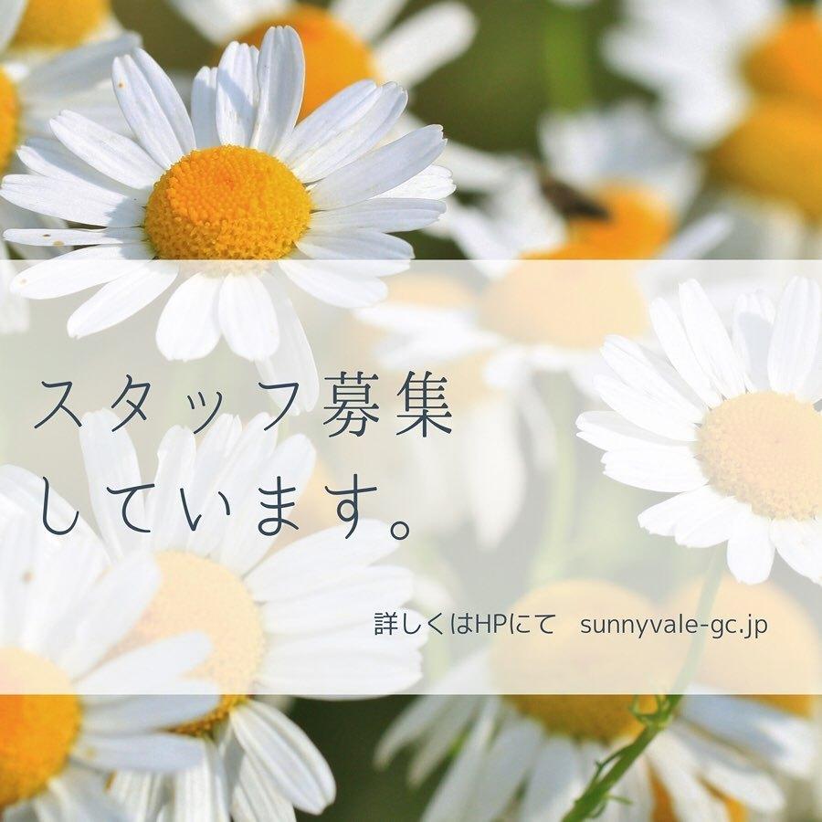 入荷情報~_f0220152_11341035.jpg
