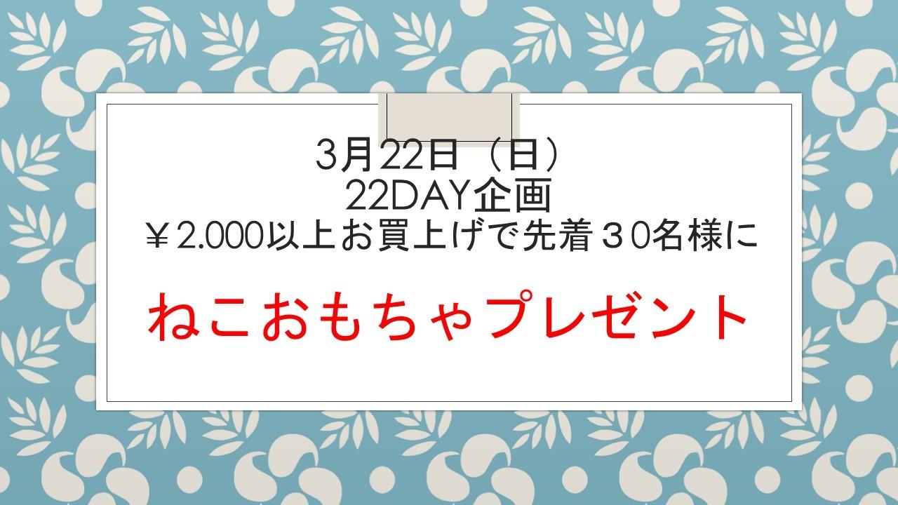 200317 22DAYイベント告知&アウトレット入荷状況_e0181866_09170353.jpg