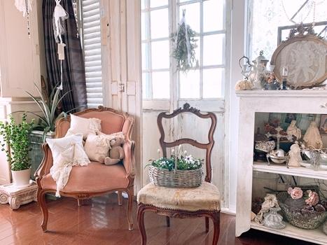 インドアグリーン 最近の我が家の観葉植物は・・・_e0237680_10284872.jpg