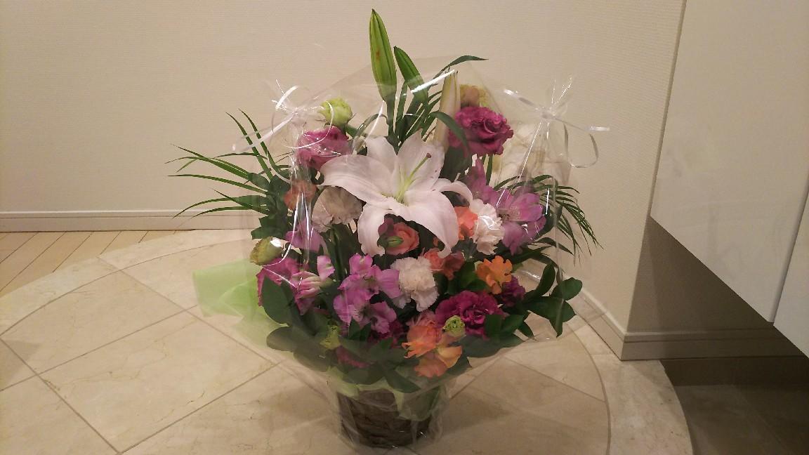 ジェームス山ペットクリニックからお花。_c0109891_07360345.jpg