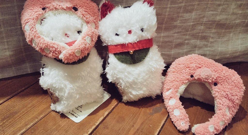 関西つうしん【鳥展vol.10】RUBIA-ARGYI ヤツガシラさん_d0322493_00075455.jpg