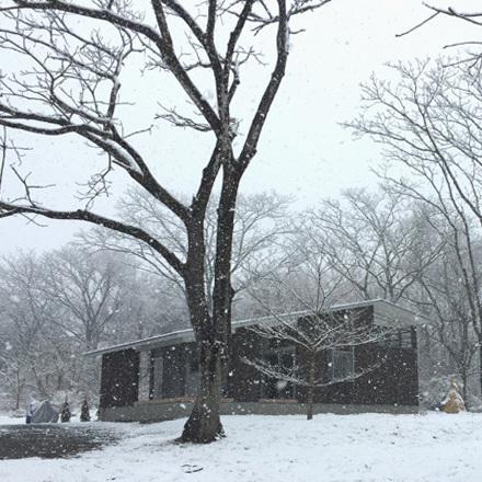 今年最後の雪景色_b0183404_17063776.jpg