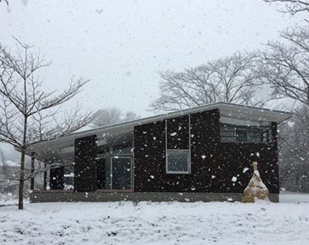 今年最後の雪景色_b0183404_17084809.jpg