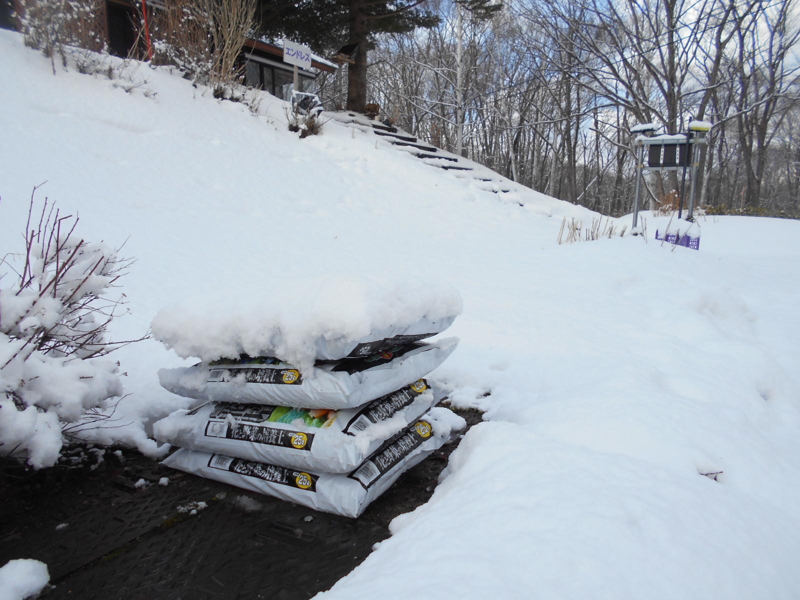 3月18日 水曜日 雪のち晴れ 3度_f0210811_08180779.jpg