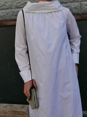 Dries Van notten coat dress_f0144612_17442184.jpg