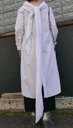 Dries Van notten coat dress_f0144612_17443361.jpg