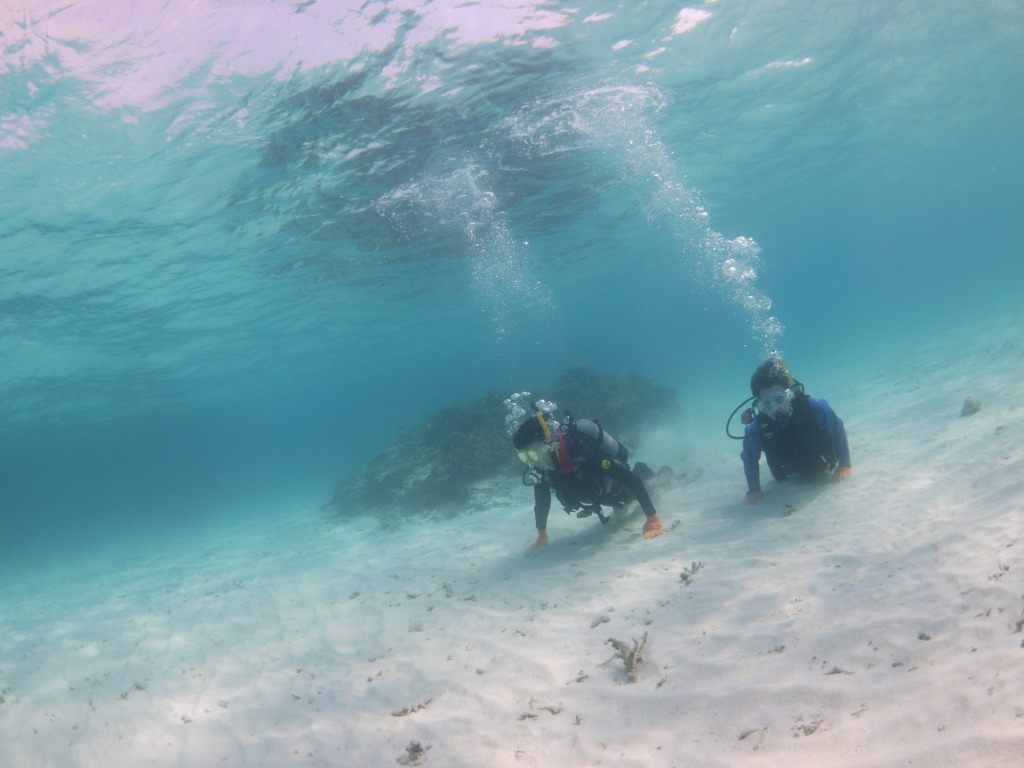 キレイな海で水中さんぽ♪_a0189838_09353896.jpg