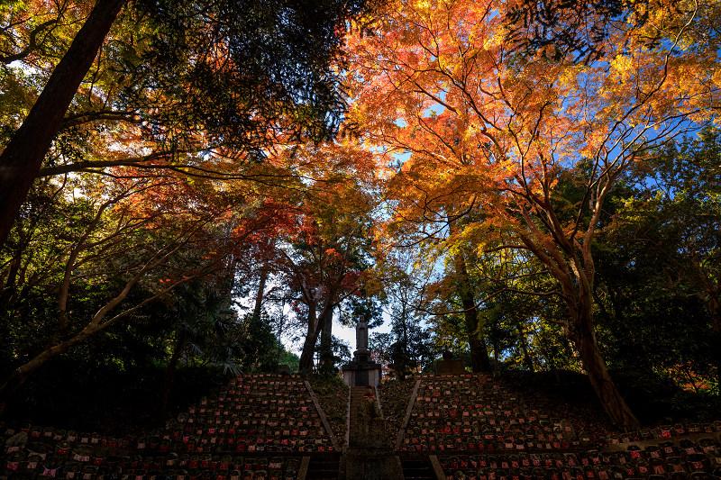 紅葉が彩る奈良2019 九品寺の秋景色_f0155048_034399.jpg