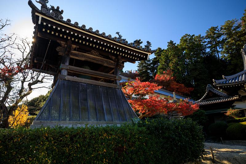 紅葉が彩る奈良2019 九品寺の秋景色_f0155048_061297.jpg