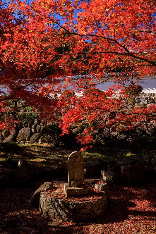 紅葉が彩る奈良2019 九品寺の秋景色_f0155048_062151.jpg