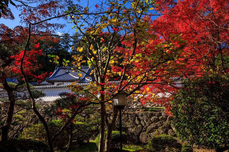 紅葉が彩る奈良2019 九品寺の秋景色_f0155048_062913.jpg