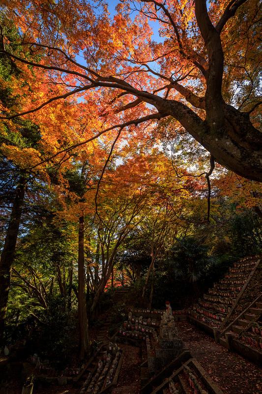 紅葉が彩る奈良2019 九品寺の秋景色_f0155048_06790.jpg