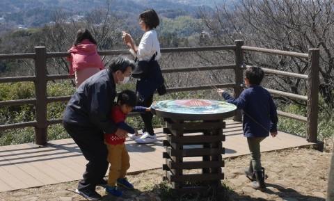 夫桜はほぼ満開、妻桜が開花3・18六国見山夫婦桜now_c0014967_17143592.jpg