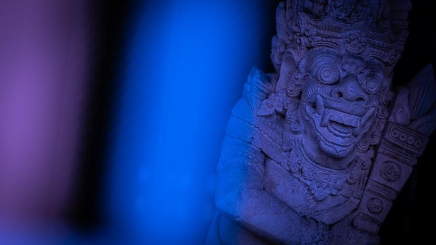 日陰で原色と戯れる石像たち_d0353489_20225906.jpg