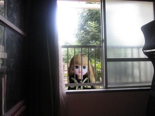 窓越しの芸人_b0203907_11193214.jpg