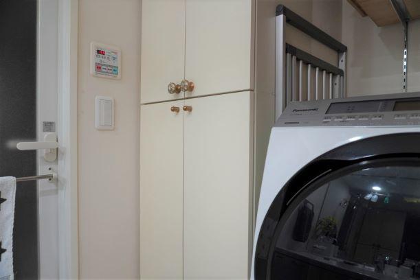 洗濯ハンガーの収納方法_e0408608_15192216.jpg